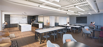 Corporate Office Renovation